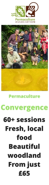 Permaculture Convergence 2016. 60+ sessions. Fresh, local food. Beautfiul woodland. From just £65