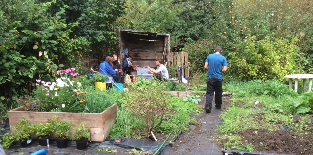The space is steadily being transformed from an overgrown allotment to our (ever-changing) final design