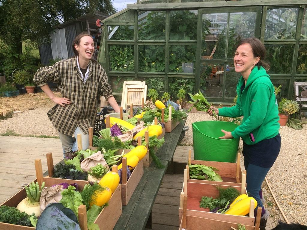 Preparing the veg box OOOOBY at Carraig Dulra