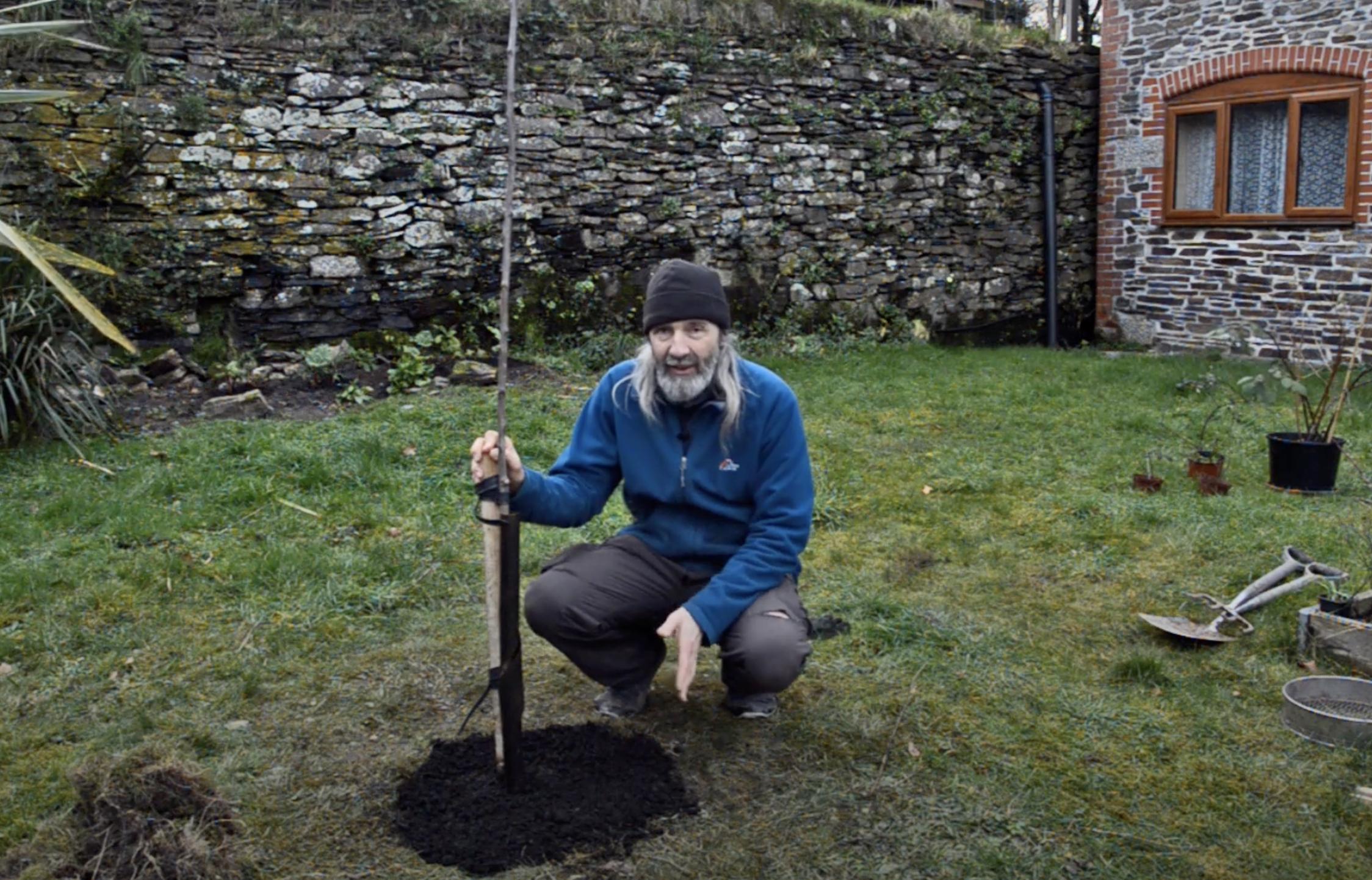 Planting a fruit tree with Aranya