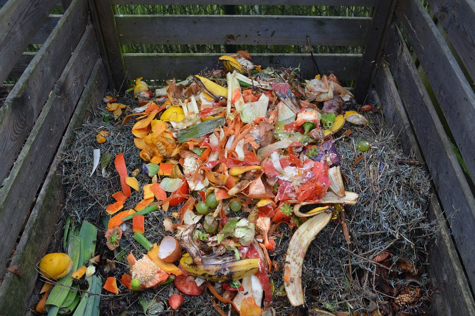Food waste in a compost pile