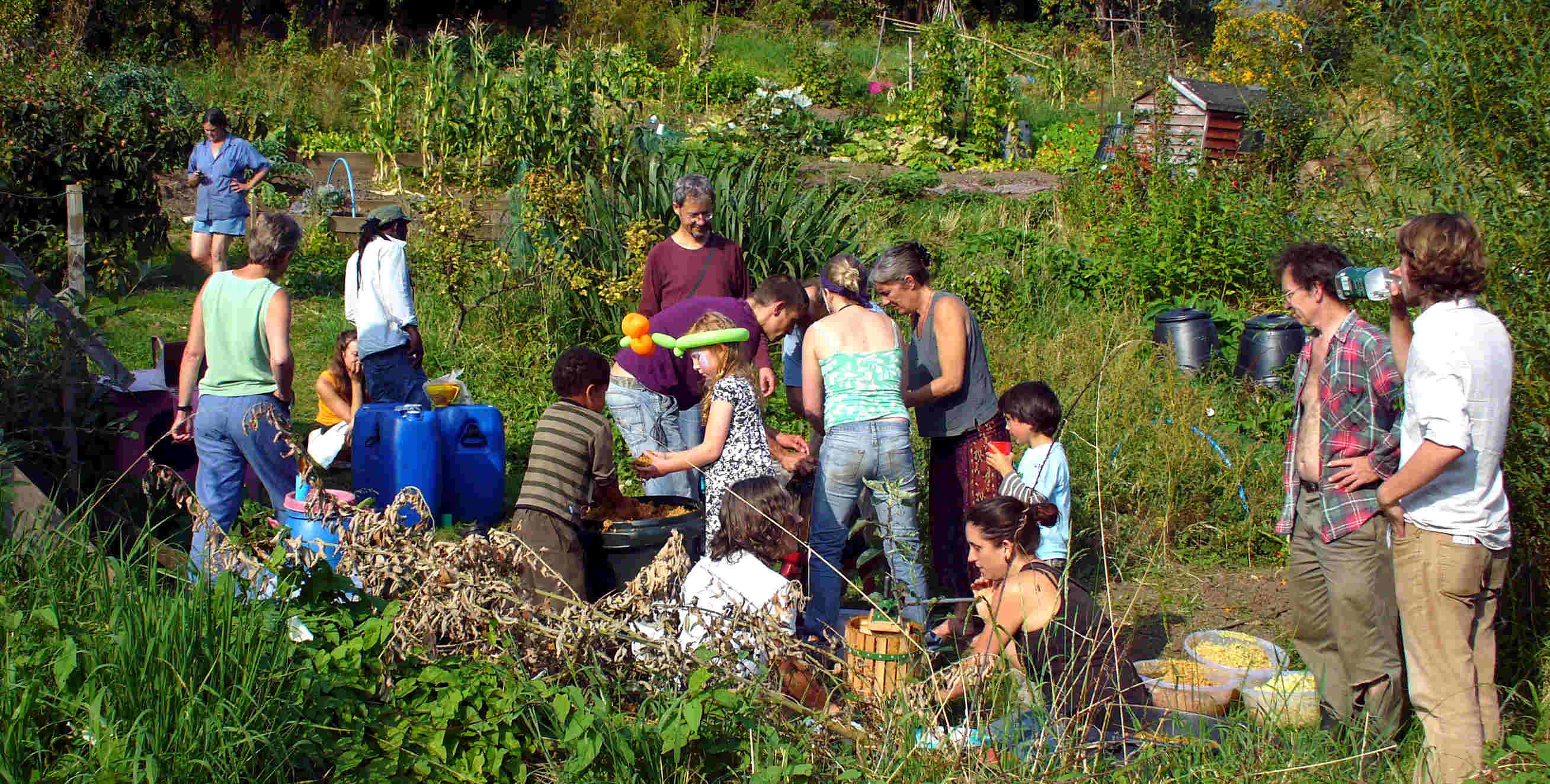 Group on allotment