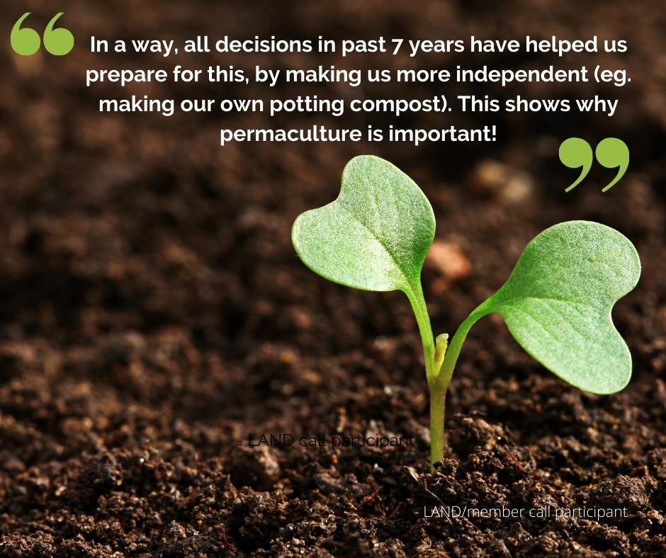 Quote on a seedling background