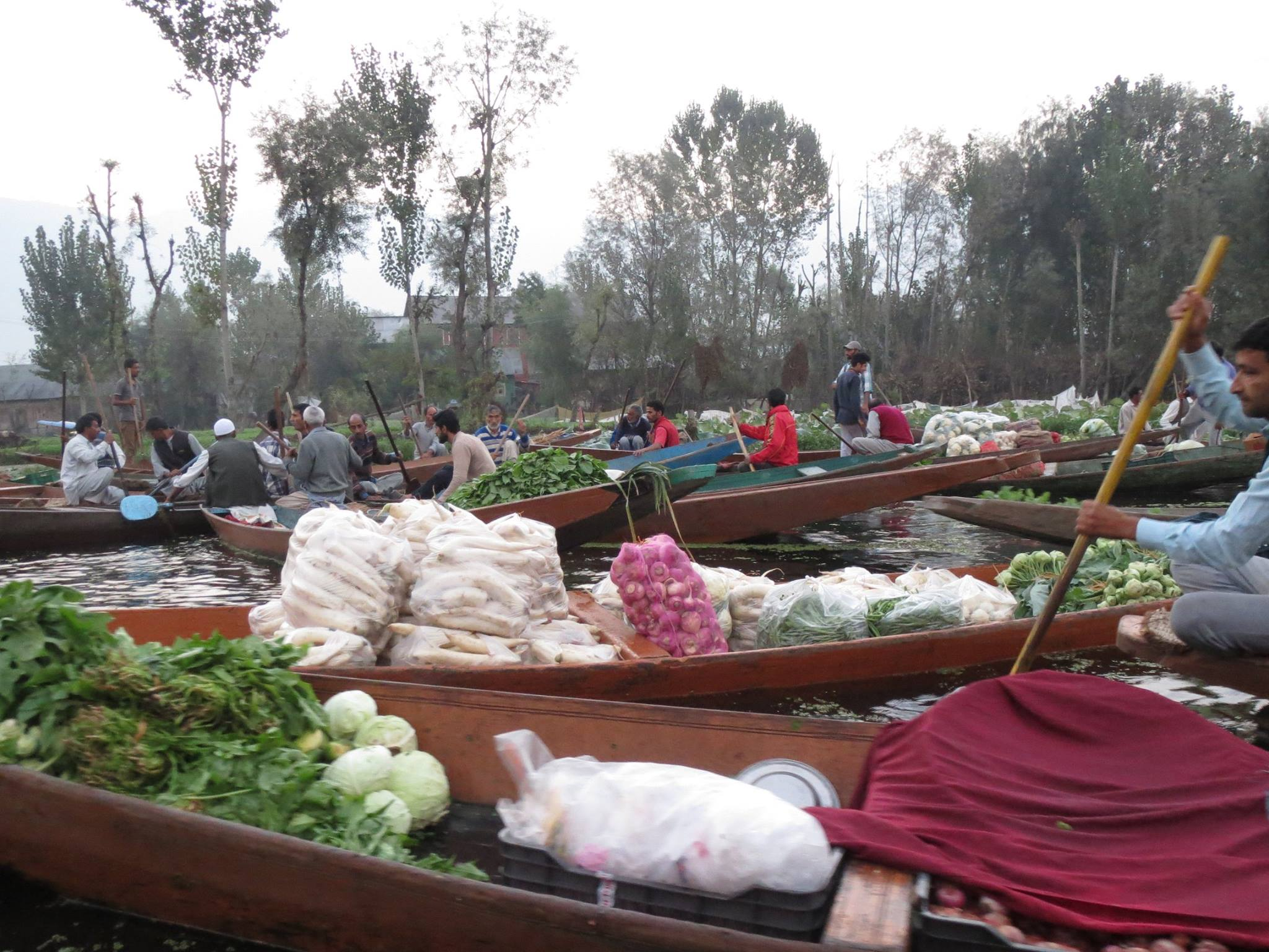 A boat transporting vegetables
