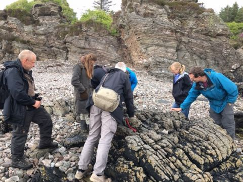 Group studying lichen on the beach
