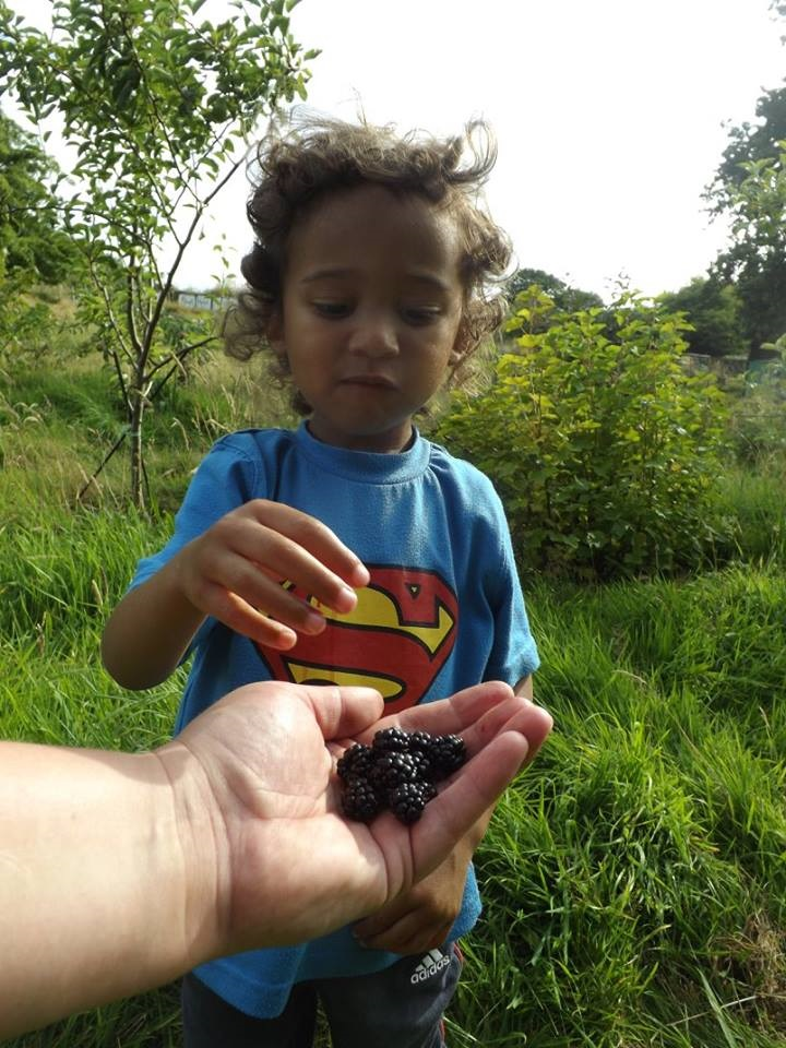 William picking berries